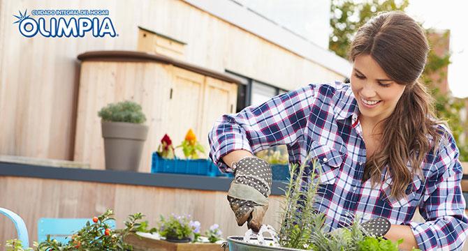 ¿Cómo montar un jardín en casa?