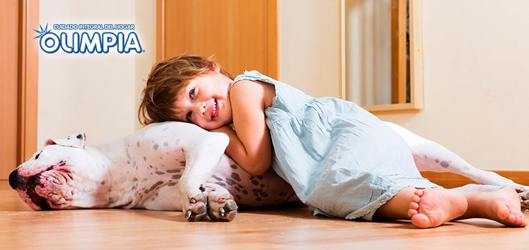Consejos para tener a tu mascota dentro de casa y la casa limpia - Olimpia